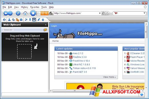 Snimak zaslona Flock Windows XP
