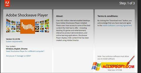 Snimak zaslona Adobe Shockwave Player Windows XP