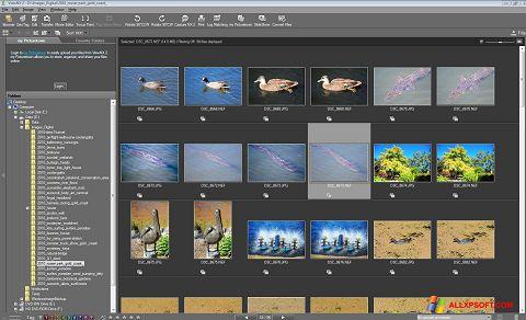 Snimak zaslona ViewNX Windows XP