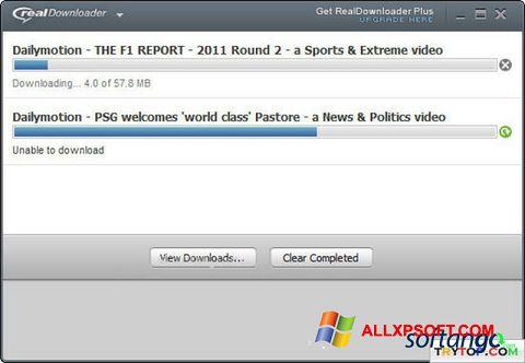 Snimak zaslona RealDownloader Windows XP